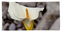 Rock Calla Lily Hand Towel by Melinda Ledsome