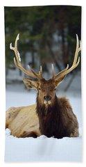 Rocky Mountain Elk Hand Towel