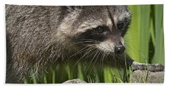 Rocky Raccoon Hand Towel by Sharon Talson