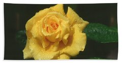 Rose 1 Hand Towel by Andy Shomock