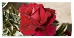 Rose 5 Hand Towel by Andy Shomock