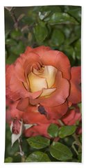 Rose 6 Hand Towel by Andy Shomock