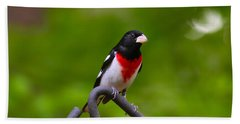 Rose Breasted Grosbeak Hand Towel
