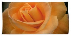 Hand Towel featuring the photograph Rose by Laurel Powell