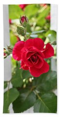 Bath Towel featuring the photograph Roses Are Red by Joann Copeland-Paul