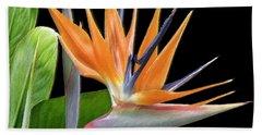 Royal Beauty I - Bird Of Paradise Hand Towel