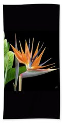 Royal Beauty I - Bird Of Paradise Bath Towel