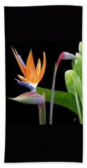 Royal Beauty II - Bird Of Paradise Bath Towel