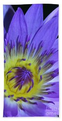 Royal Purple Water Lily #11 Hand Towel