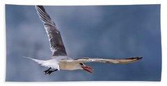 Royal Tern 1 Bath Towel