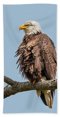 Ruffled Feathers Bald Eagle Bath Towel