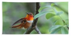 Rufus Hummingbird Hand Towel