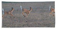 Running White-tailed Deer Hand Towel