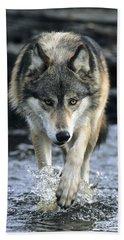 Running Wolf Bath Towel