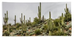 Saguaro Cactus  Hand Towel