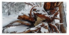 Bath Towel featuring the photograph San Jacinto Fallen Tree by Kyle Hanson