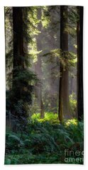 Sanctuary 2 Bath Towel by Mark Alder
