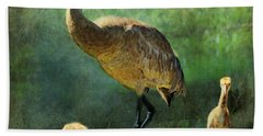 Sandhill And Chicks Hand Towel by Barbara Chichester