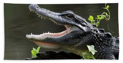 Say Aah - American Alligator Hand Towel by Meg Rousher