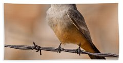 Say's Phoebe On A Barbed Wire Bath Towel