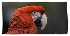 Bath Towel featuring the photograph Scarlet Macaw by David Millenheft