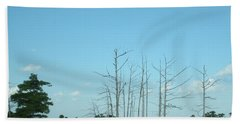Hand Towel featuring the photograph Scenic Swamp Cypress Trees by Joseph Baril
