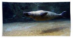 Hand Towel featuring the photograph Sea Lion Swimming Upsidedown by Verana Stark