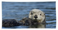 Sea Otter Alaska Hand Towel by Michael Quinton