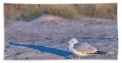 Seagull At Sunrise Hand Towel