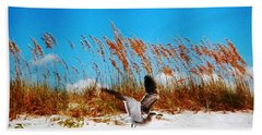 Hand Towel featuring the photograph Seagull In Flight Beach Landing by Belinda Lee