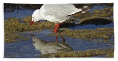 Seagull Reflections Bath Towel by Venetia Featherstone-Witty