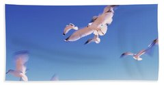 Seagulls Flying Along Route A1a Hand Towel