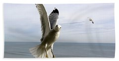 Inquisitive Seagull Hand Towel