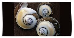 Seashells Spectacular No 23 Hand Towel