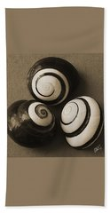 Seashells Spectacular No 28 Hand Towel