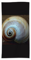 Seashells Spectacular No 36 Hand Towel