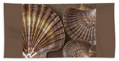 Seashells Spectacular No 7 Bath Towel