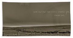 Hand Towel featuring the photograph Seek And Find by Amanda Smith