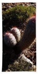 Senor Cacti Bath Towel