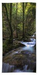 Hand Towel featuring the photograph Sesin Stream Near Caaveiro by Pablo Avanzini