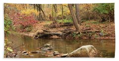 Shades Of Fall In Ridley Park Hand Towel by Patrice Zinck