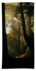 Shadow Dreams Hand Towel by Jeff Swan