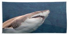 Shark Hand Towel