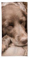 Shishka Dog Dreaming The Day Away Hand Towel