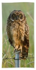 Short-eared Owl Hand Towel by Doug Herr