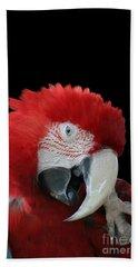 Shy Macaw Bath Towel by Judy Whitton