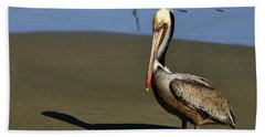 Shy Pelican Bath Towel