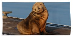 Shy Sea Lion Pup  Bath Towel