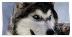 Siberian Husky Hand Towel by Linsey Williams