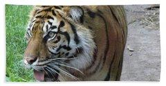 Hand Towel featuring the photograph Siberian Tiger by Lingfai Leung